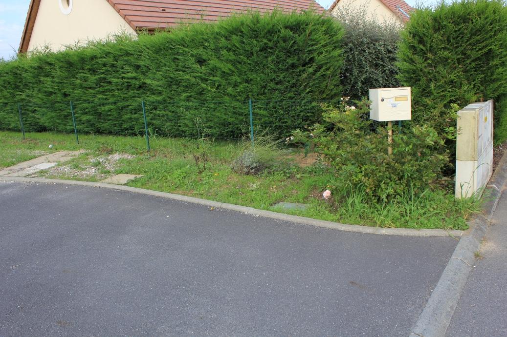 Forums de jardinage afficher le sujet recherche id es for Sujet decoratif pour jardin
