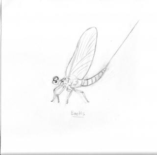 dessins...! 82550006145e0192368940img